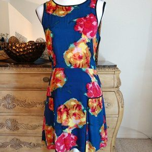 Rachel Roy A-Line Floral Pattern Dress.  Size 10